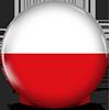 Polish CDL
